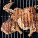 Crispy Grilled Greek-Style Chicken